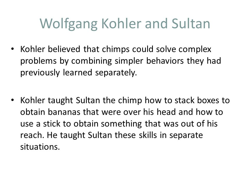 Wolfgang Kohler and Sultan Kohler believed that chimps could solve complex problems by combining simpler behaviors they had previously learned separately.