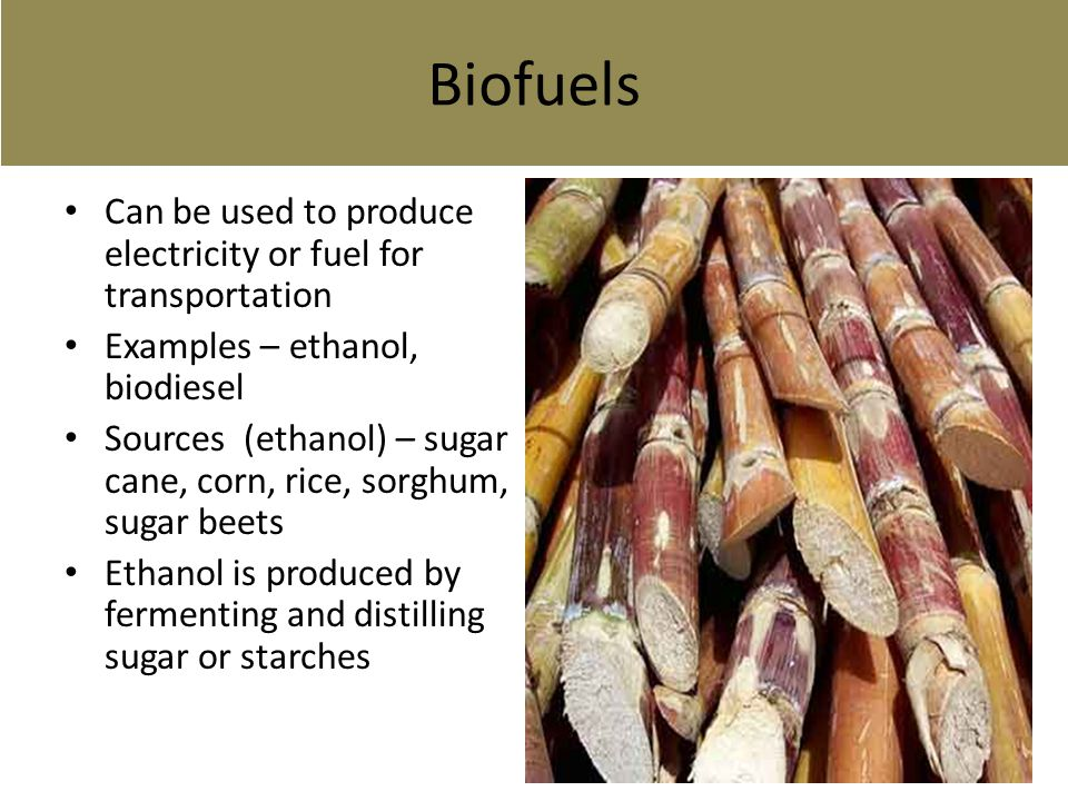 bio fuels essay biofuels are fuels made from biomass essay What are biofuels fuels that have been extracted from plants and crops are known as biofuels since biofuels can be made from renewable resources.