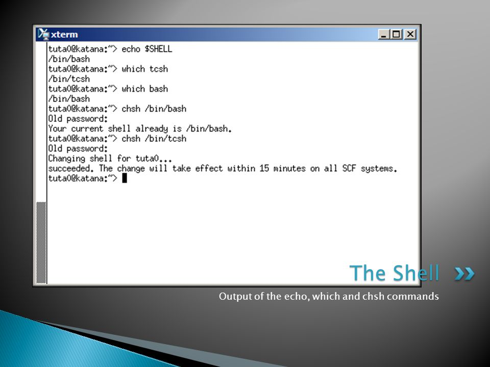 Output of the echo, which and chsh commands The Shell