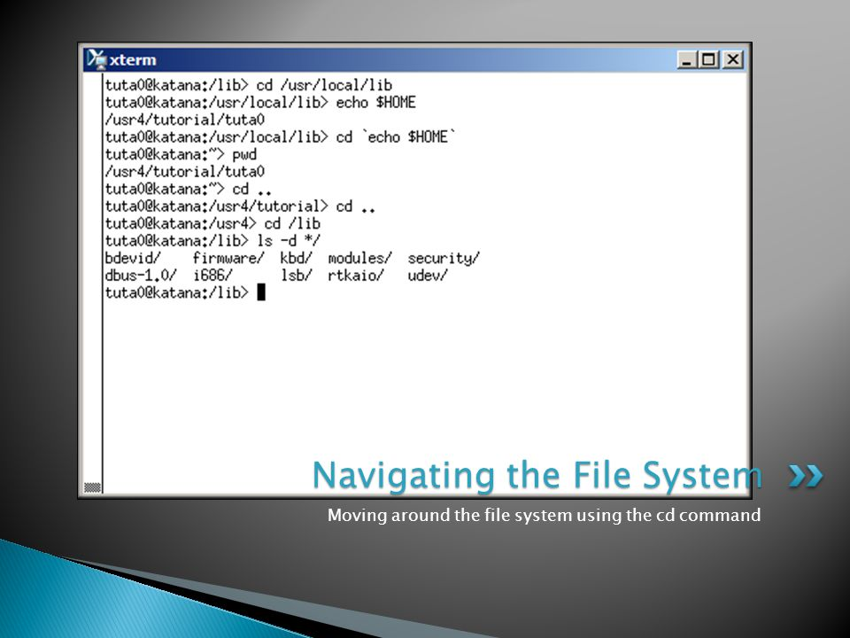 Moving around the file system using the cd command Navigating the File System