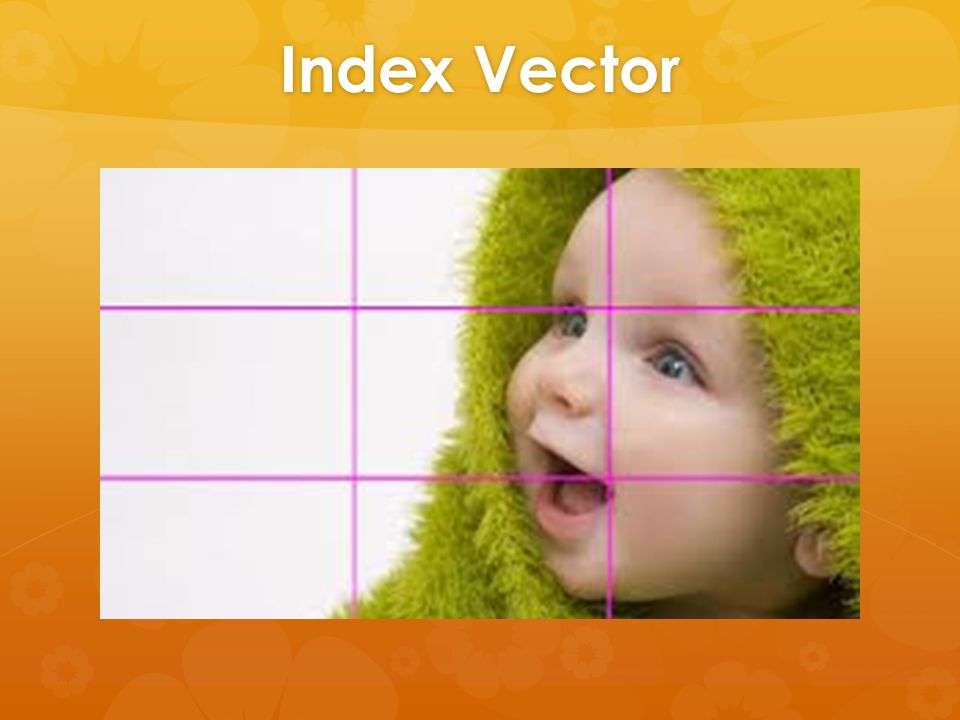 Index Vector