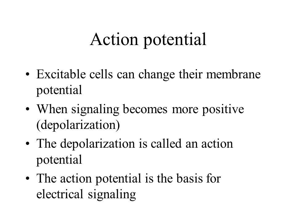Action potential Excitable cells can change their membrane potential When signaling becomes more positive (depolarization) The depolarization is called an action potential The action potential is the basis for electrical signaling