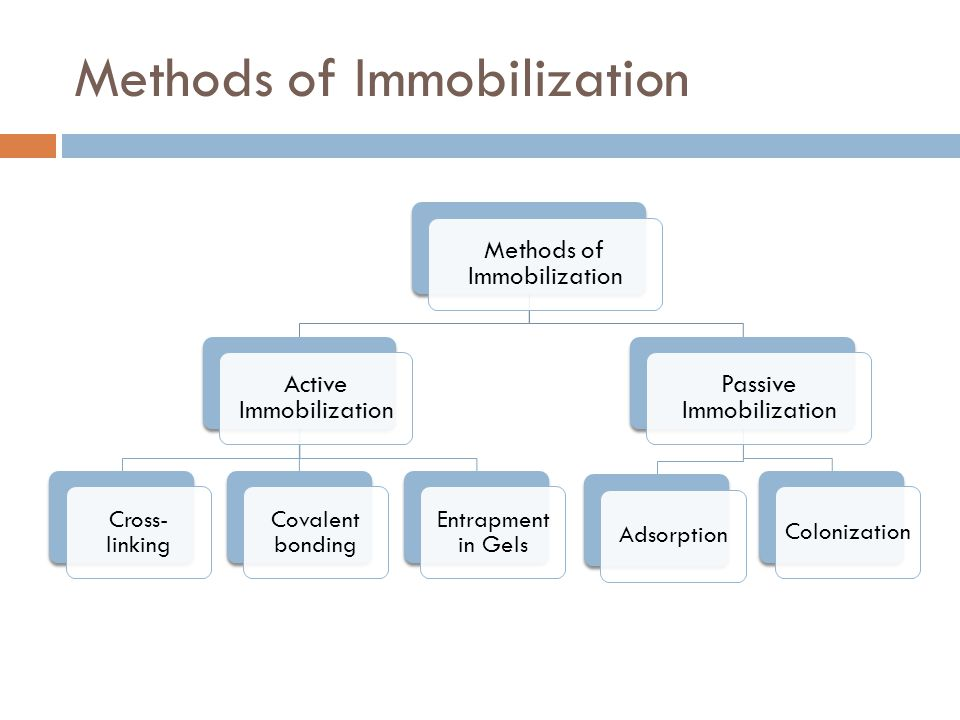 Methods of Immobilization Active Immobilization Cross- linking Covalent bonding Entrapment in Gels Passive Immobilization AdsorptionColonization