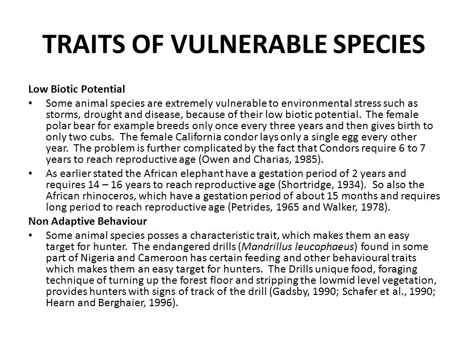 TRAITS OF VULNERABLE SPECIES Low Biotic Potential Some animal species are extremely vulnerable to environmental stress such as storms, drought and disease, because of their low biotic potential.