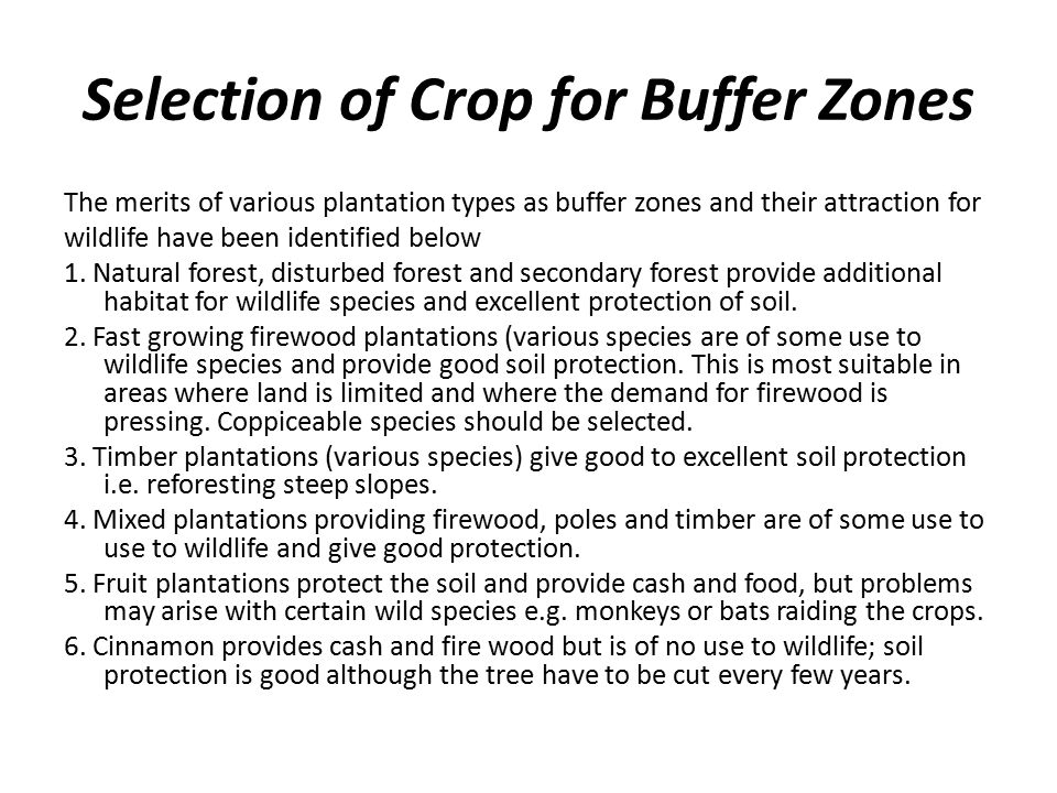 Selection of Crop for Buffer Zones The merits of various plantation types as buffer zones and their attraction for wildlife have been identified below 1.