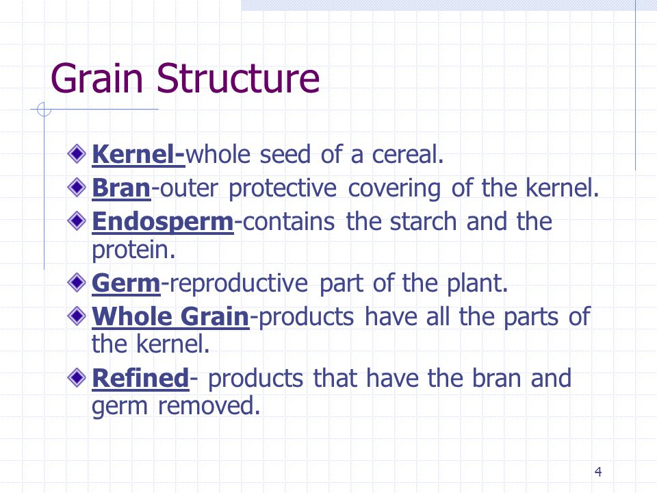 4 Grain Structure Kernel-whole seed of a cereal. Bran-outer protective covering of the kernel.