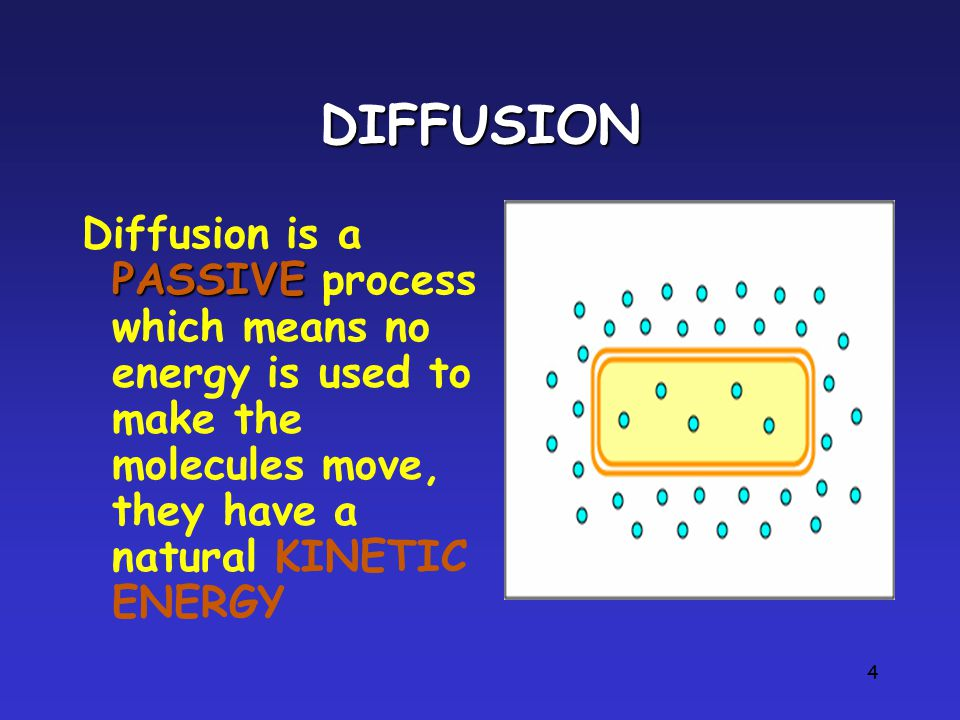 4 DIFFUSION PASSIVE Diffusion is a PASSIVE process which means no energy is used to make the molecules move, they have a natural KINETIC ENERGY