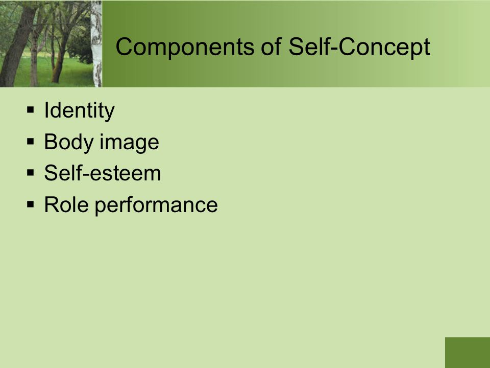 Components of Self-Concept  Identity  Body image  Self-esteem  Role performance