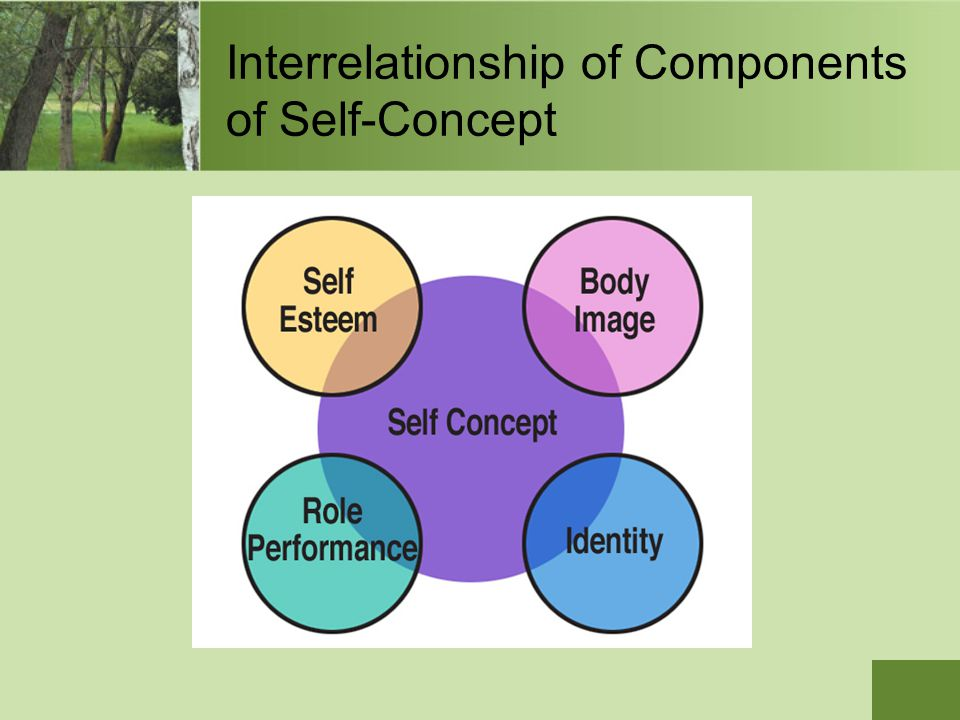 Interrelationship of Components of Self-Concept