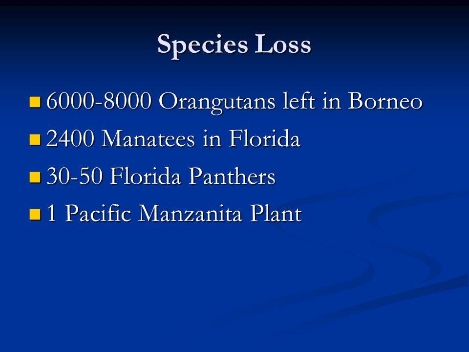 Species Loss 6000-8000 Orangutans left in Borneo 6000-8000 Orangutans left in Borneo 2400 Manatees in Florida 2400 Manatees in Florida 30-50 Florida Panthers 30-50 Florida Panthers 1 Pacific Manzanita Plant 1 Pacific Manzanita Plant