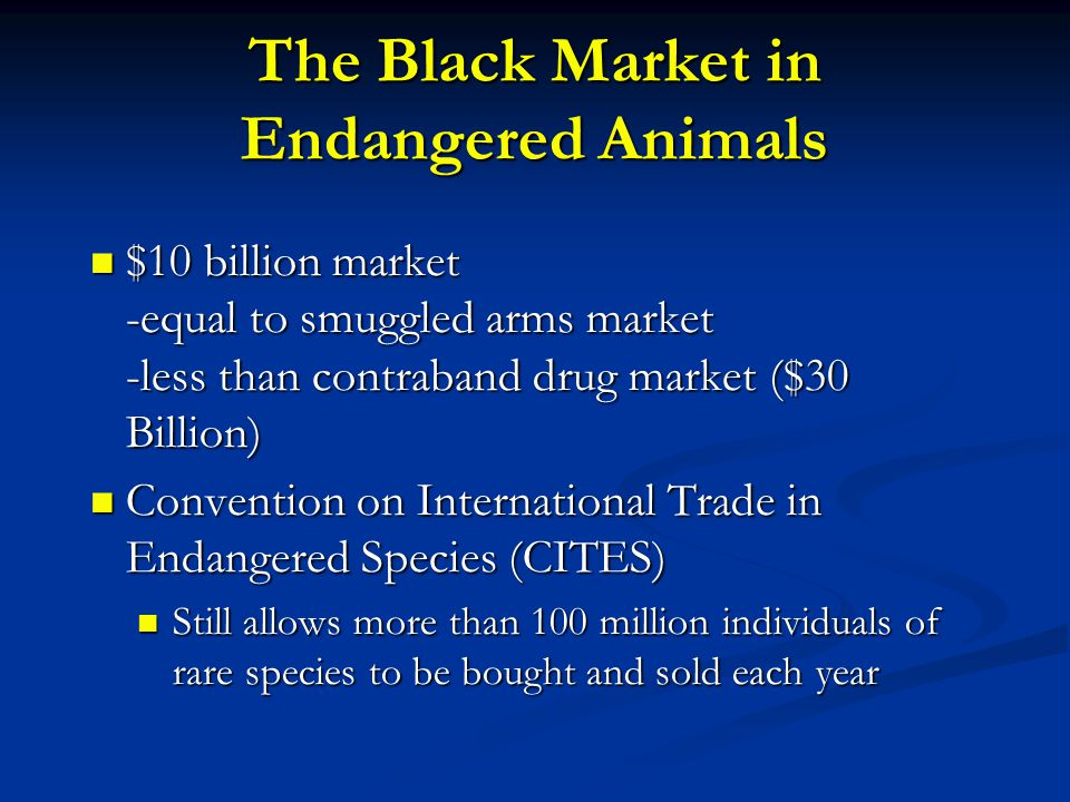 The Black Market in Endangered Animals $10 billion market -equal to smuggled arms market -less than contraband drug market ($30 Billion) $10 billion market -equal to smuggled arms market -less than contraband drug market ($30 Billion) Convention on International Trade in Endangered Species (CITES) Convention on International Trade in Endangered Species (CITES) Still allows more than 100 million individuals of rare species to be bought and sold each year Still allows more than 100 million individuals of rare species to be bought and sold each year
