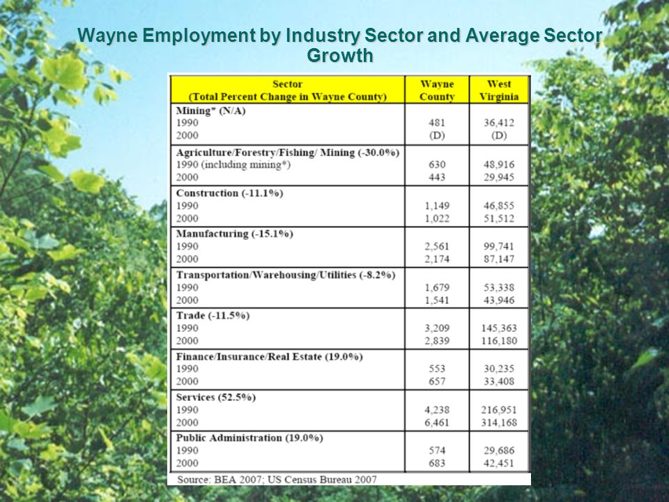 Wayne Employment by Industry Sector and Average Sector Growth