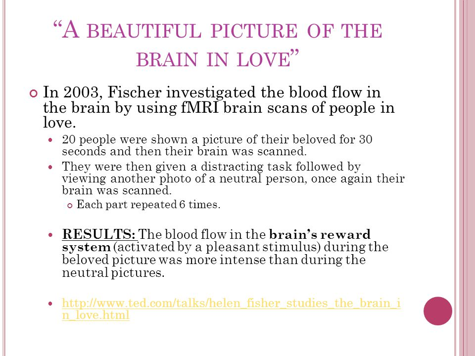 A BEAUTIFUL PICTURE OF THE BRAIN IN LOVE In 2003, Fischer investigated the blood flow in the brain by using fMRI brain scans of people in love.