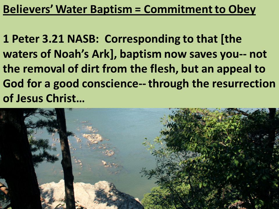 Believers' Water Baptism = Commitment to Obey 1 Peter 3.21 NASB: Corresponding to that [the waters of Noah's Ark], baptism now saves you-- not the removal of dirt from the flesh, but an appeal to God for a good conscience-- through the resurrection of Jesus Christ…