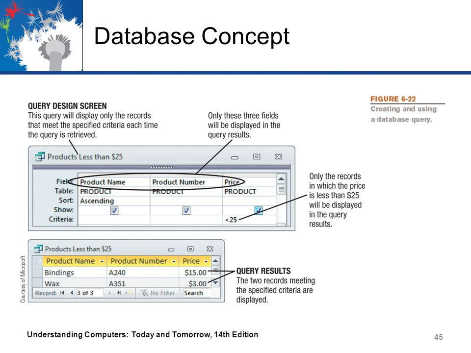 Database Concept Understanding Computers: Today and Tomorrow, 14th Edition 45