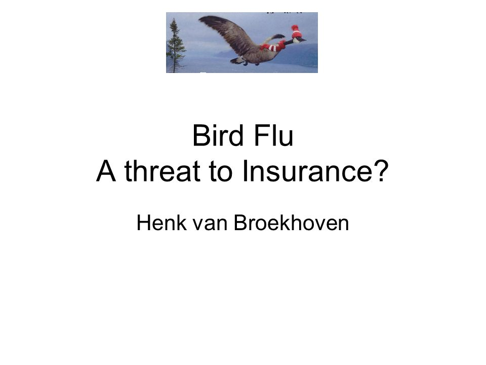Bird Flu A threat to Insurance Henk van Broekhoven