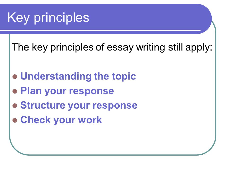 write my english literature essay structure ap english essay prompts their types tips and examples