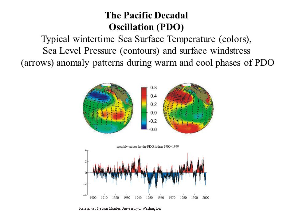 The Pacific Decadal Oscillation (PDO) Typical wintertime Sea Surface Temperature (colors), Sea Level Pressure (contours) and surface windstress (arrows) anomaly patterns during warm and cool phases of PDO