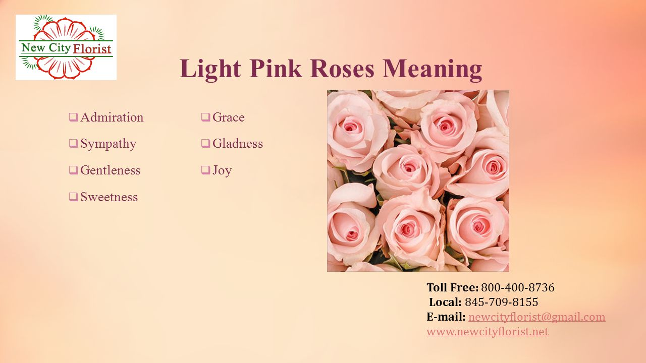 Toll free local june the month of rosesjune ppt download 8 toll free 800 400 8736 local 845 709 8155 e mail newcityfloristgmailnewcityfloristgmail newcityflorist light pink roses meaning mightylinksfo