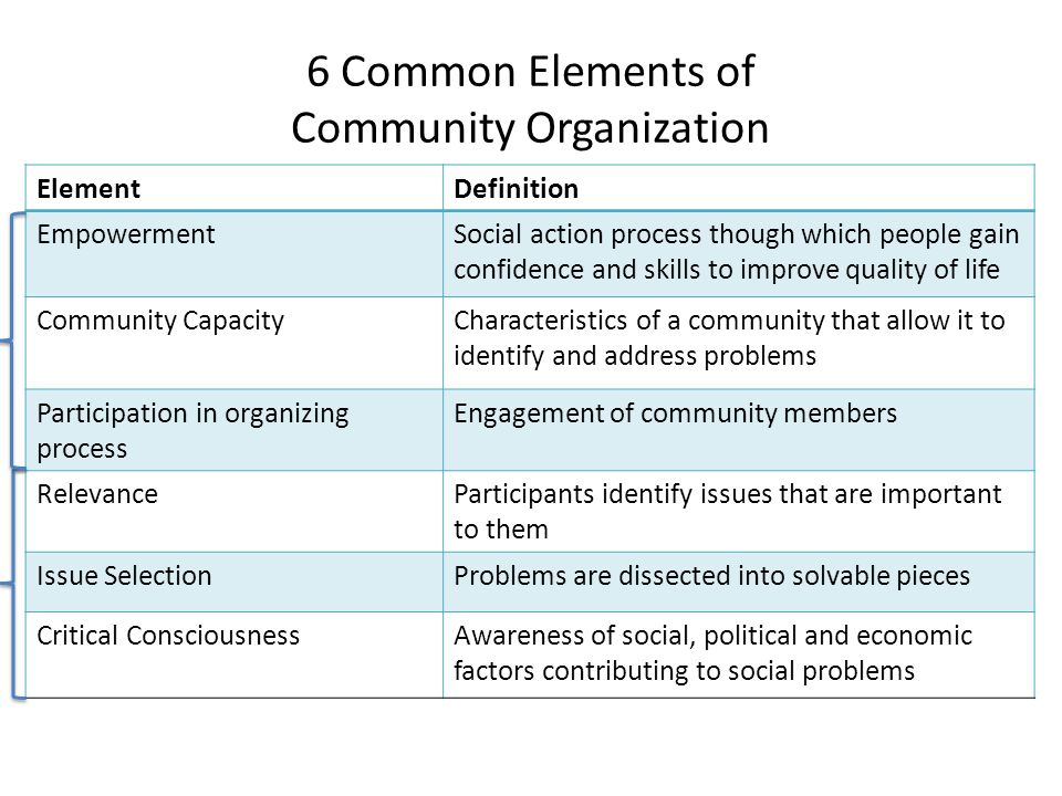 6 Common Elements of Community Organization ElementDefinition EmpowermentSocial action process though which people gain confidence and skills to improve quality of life Community CapacityCharacteristics of a community that allow it to identify and address problems Participation in organizing process Engagement of community members RelevanceParticipants identify issues that are important to them Issue SelectionProblems are dissected into solvable pieces Critical ConsciousnessAwareness of social, political and economic factors contributing to social problems