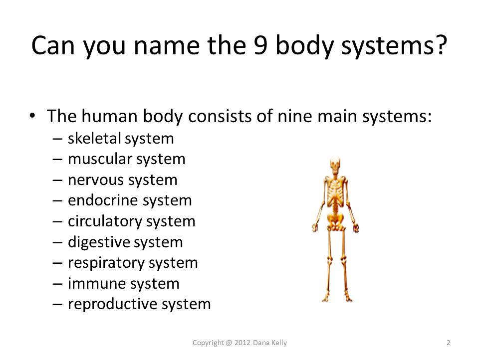 Niedlich Human Anatomy Trivia Fotos - Menschliche Anatomie Bilder ...