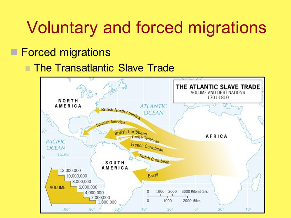 Voluntary and forced migrations Forced migrations The Transatlantic Slave Trade