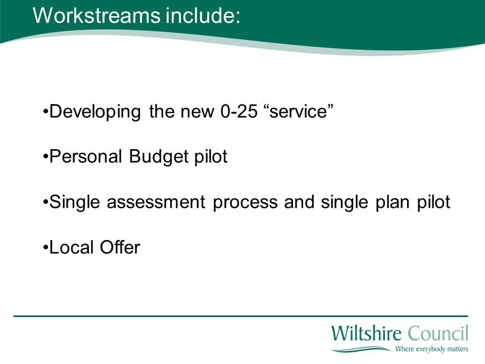 Developing the new 0-25 service Personal Budget pilot Single assessment process and single plan pilot Local Offer Workstreams include: