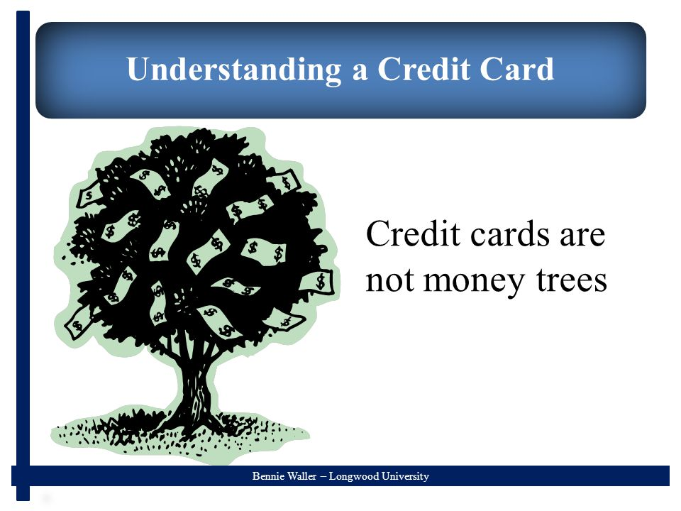 Bennie Waller – Longwood University Understanding a Credit Card Credit cards are not money trees