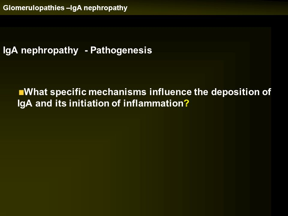 IgA nephropathy - Pathogenesis What specific mechanisms influence the deposition of IgA and its initiation of inflammation