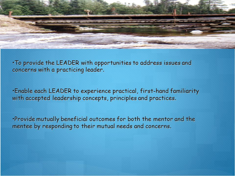 TheoryPractice To provide the LEADER with opportunities to address issues and concerns with a practicing leader.To provide the LEADER with opportunities to address issues and concerns with a practicing leader.
