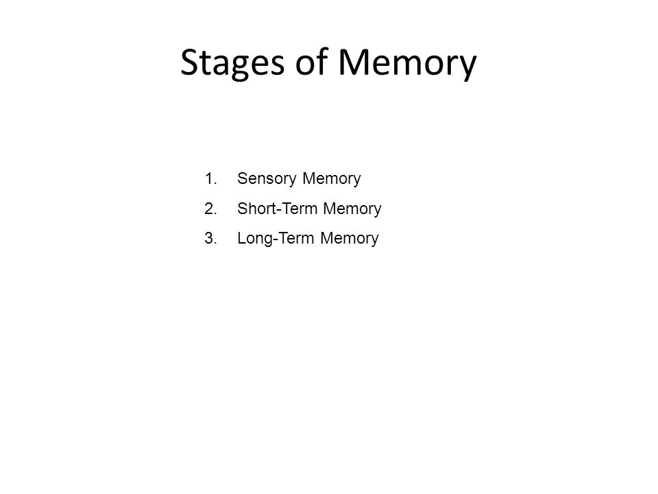 Memory: Active system that stores, organizes, alters, and recovers (retrieves) information Encoding: Converting information into a useable form Storage: Holding this information in memory Retrieval: Taking memories out of storage Memory: Key Terms