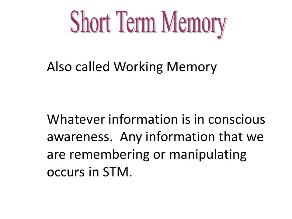 Short-Term Memory (STM): second stage of memory; stores small amounts of information briefly; very sensitive to interruption or interference Phonetically: Storing information by sound; Memory Span: STM is limited to holding seven (plus or minus two) information bits at once Chunk: Meaningful units of information in memory Short-Term Memory (STM)
