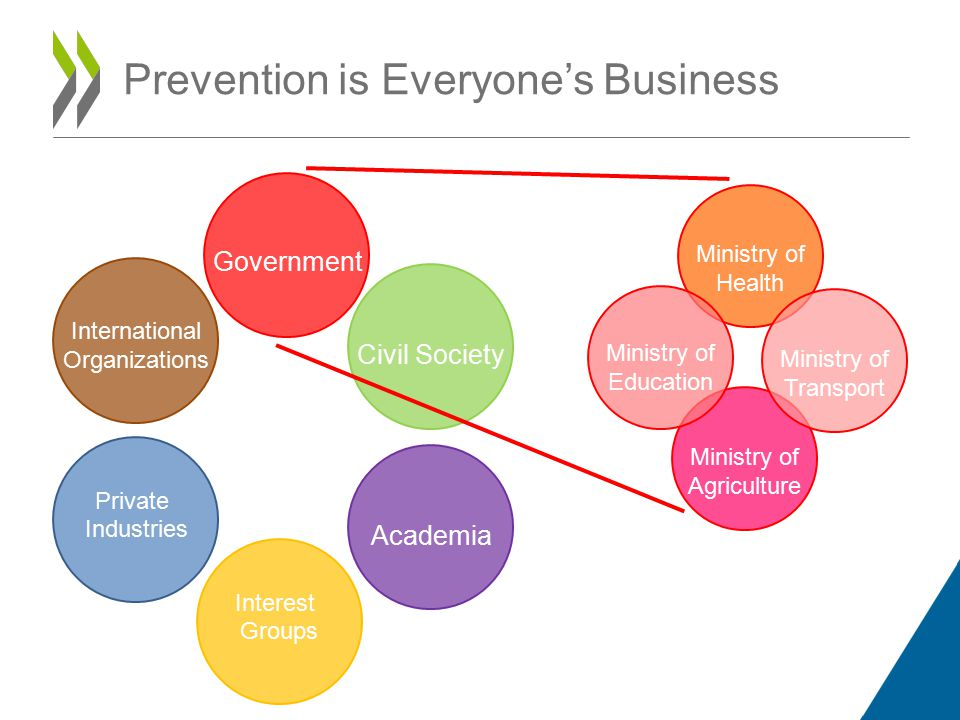 Prevention is Everyone's Business International Organizations Civil Society Private Industries Interest Groups Government Academia Ministry of Agriculture Ministry of Health Ministry of Education Ministry of Transport