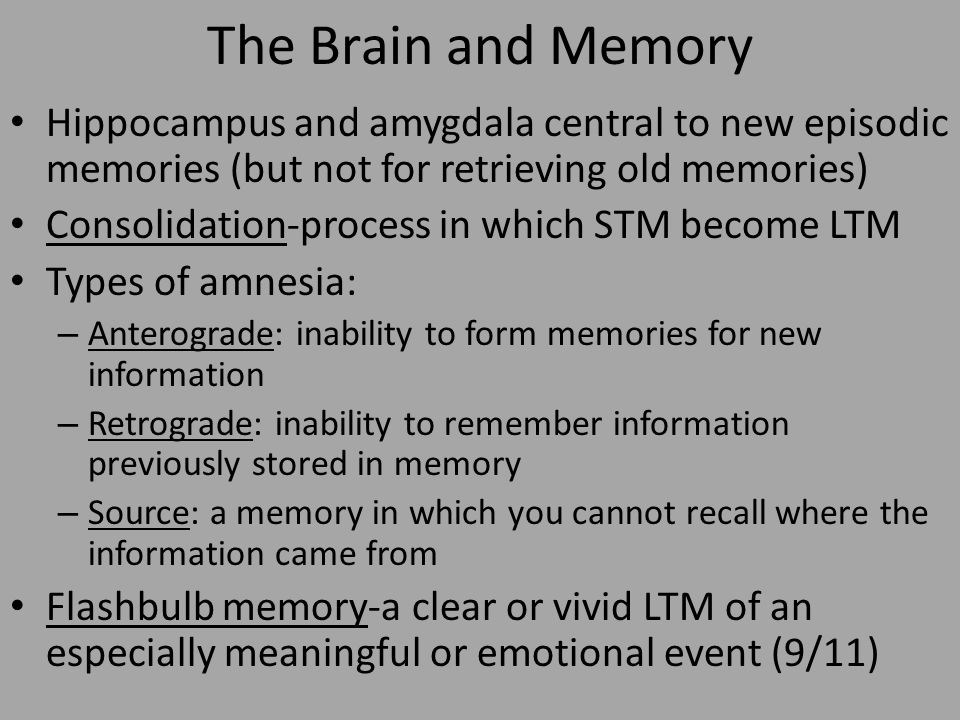Memory and Cognition Intro to Memory/Cognition and Forming ...