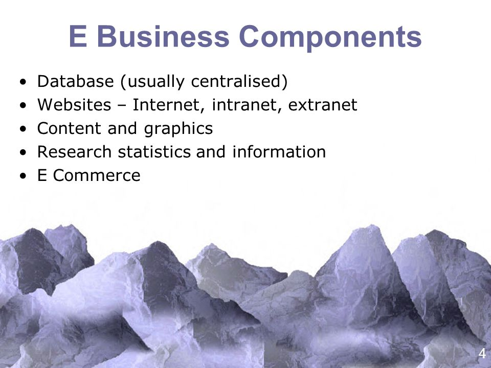 4 E Business Components Database (usually centralised) Websites – Internet, intranet, extranet Content and graphics Research statistics and information E Commerce