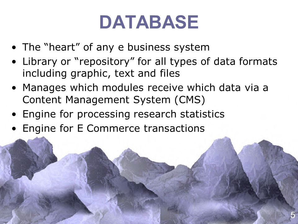 5 DATABASE The heart of any e business system Library or repository for all types of data formats including graphic, text and files Manages which modules receive which data via a Content Management System (CMS) Engine for processing research statistics Engine for E Commerce transactions