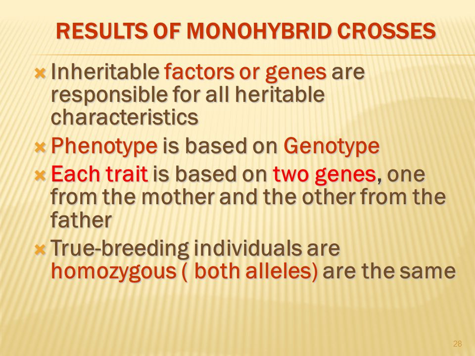 RESULTS OF MONOHYBRID CROSSES  Inheritable factors or genes are responsible for all heritable characteristics  Phenotype is based on Genotype  Each trait is based on two genes, one from the mother and the other from the father  True-breeding individuals are homozygous ( both alleles) are the same 28