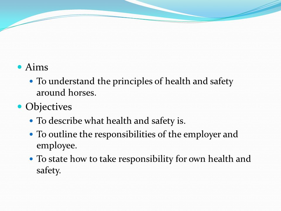 Aims To understand the principles of health and safety around horses.
