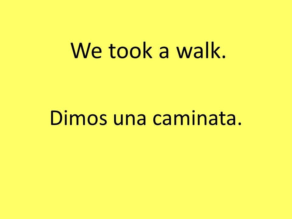 We took a walk. Dimos una caminata.