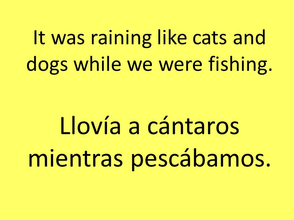 It was raining like cats and dogs while we were fishing. Llovía a cántaros mientras pescábamos.