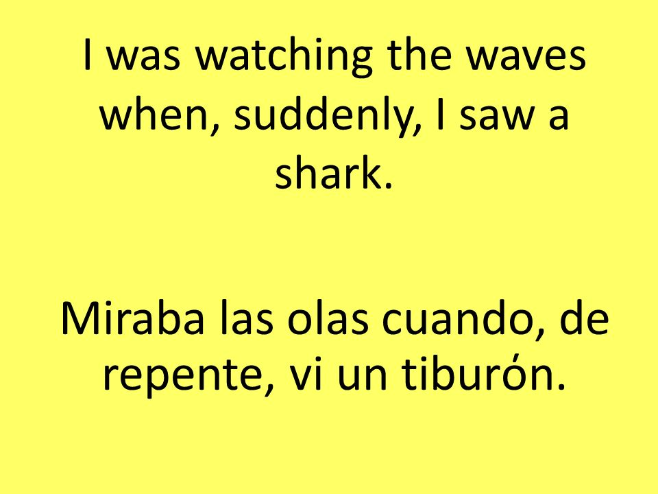 I was watching the waves when, suddenly, I saw a shark.