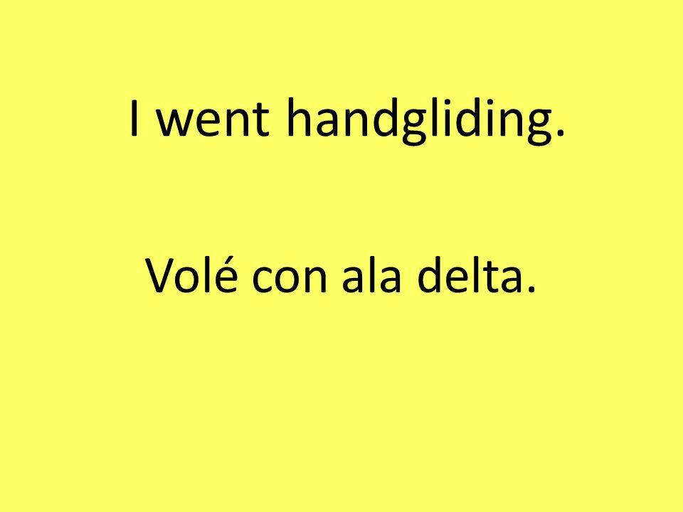 I went handgliding. Volé con ala delta.