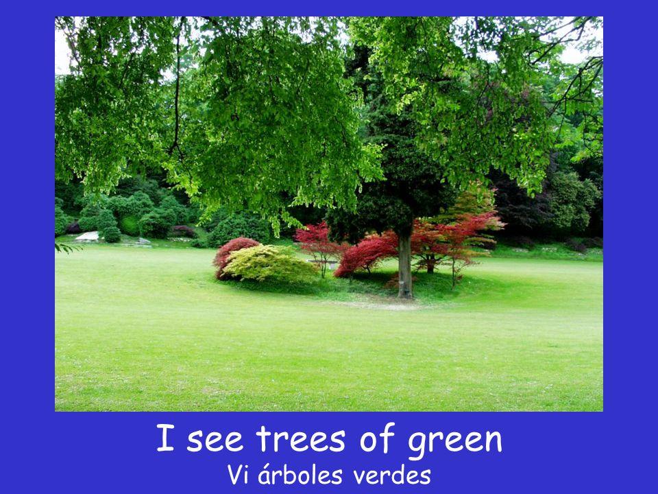 I see trees of green Vi árboles verdes