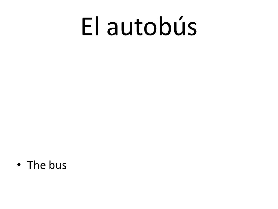 El autobús The bus