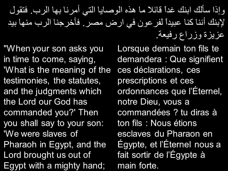 والرب أعطي علامات وعجائب عظيمة مخوفة في ارض مصر في فرعون وجميع بيته أمامنا.