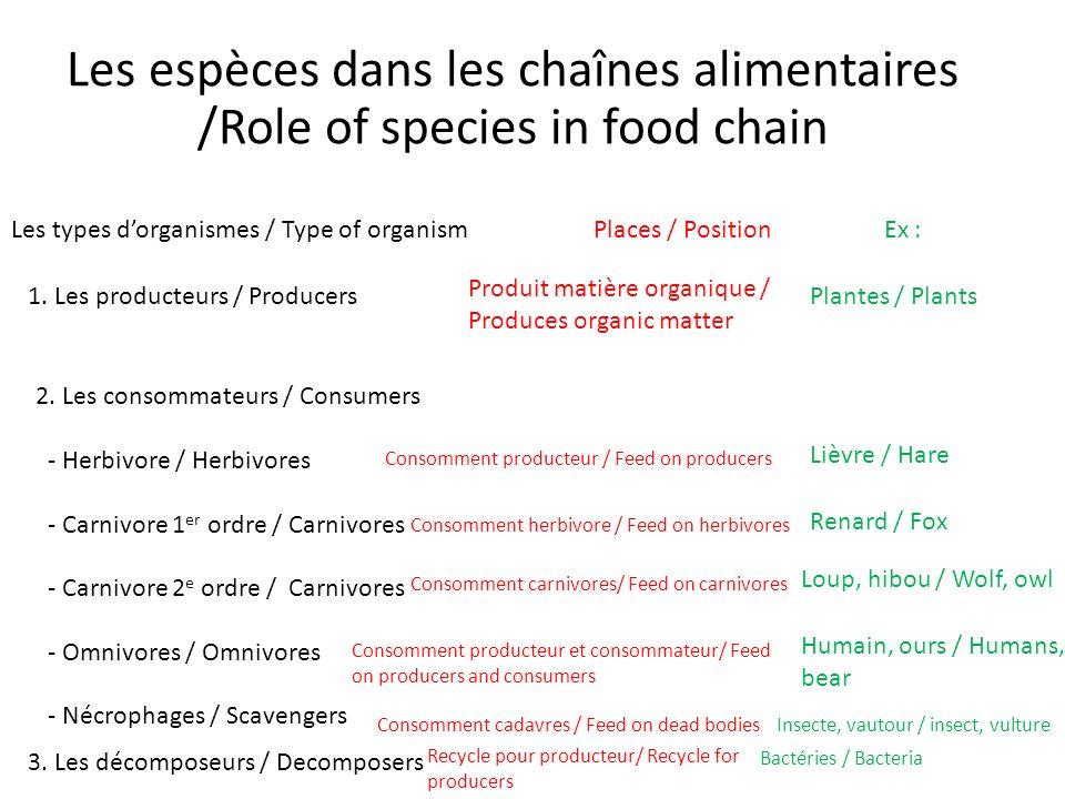 Les espèces dans les chaînes alimentaires /Role of species in food chain Les types dorganismes / Type of organismPlaces / PositionEx : 1.