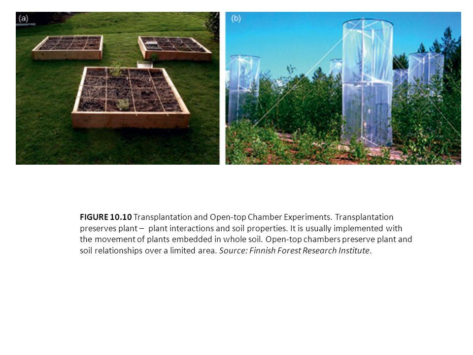 FIGURE 10.10 Transplantation and Open-top Chamber Experiments. Transplantation preserves plant – plant interactions and soil properties. It is usually