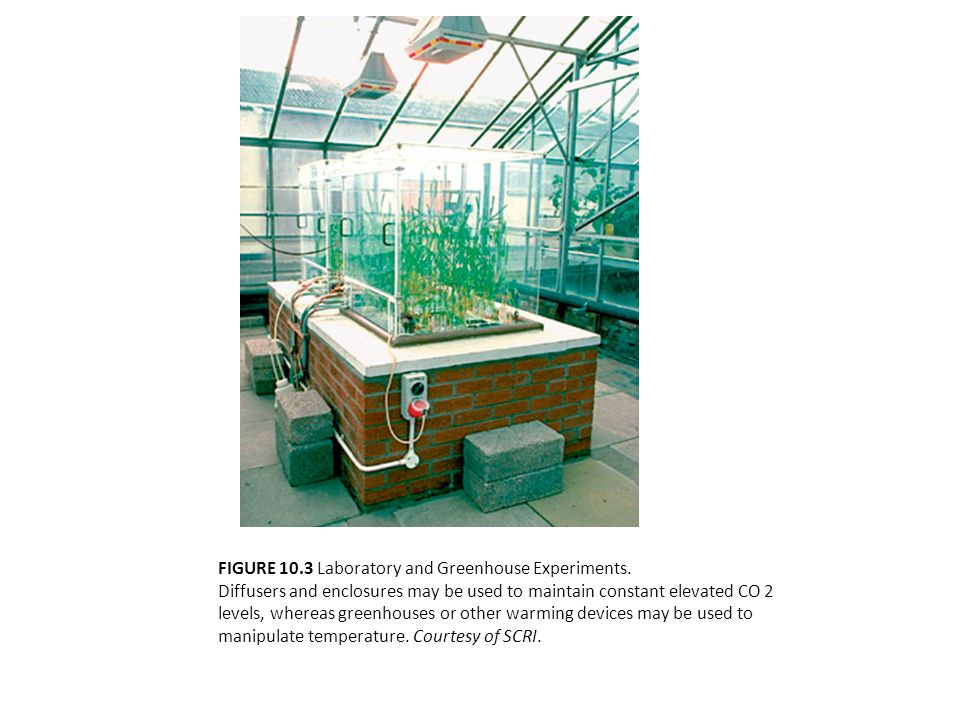 FIGURE 10.3 Laboratory and Greenhouse Experiments. Diffusers and enclosures may be used to maintain constant elevated CO 2 levels, whereas greenhouses