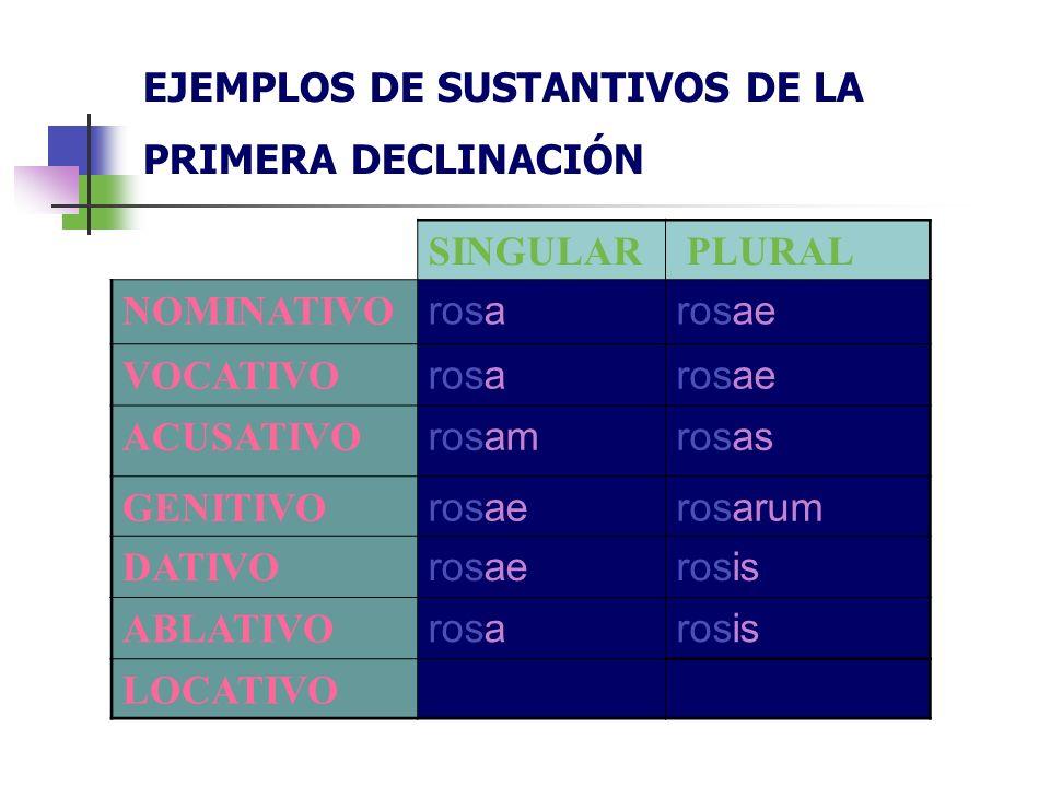EJEMPLOS DE SUSTANTIVOS DE LA PRIMERA DECLINACIÓN SINGULAR PLURAL NOMINATIVO rosarosae VOCATIVO rosarosae ACUSATIVO rosamrosas GENITIVO rosaerosarum D