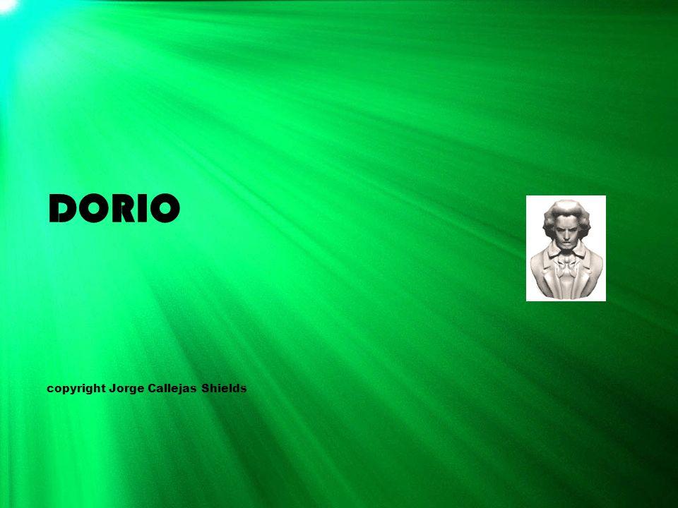 DORIO copyright Jorge Callejas Shields